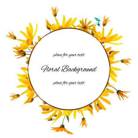 background texture made of yellow sunflower fresh and place for text,  photo manipulation Stock Photo