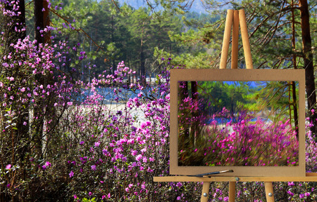 Easel with a painting watercolor illustration of Altai Mountains  rose bush on a canvas on a landscape.   Photo manipulation concept.