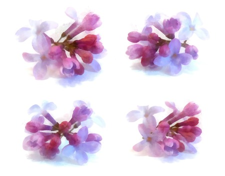 blue lilac watercolor draw perspective, paint fresh delicate flowers and petals set , isolated on white background