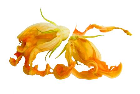 fried zucchini flowers isolated photo manipulation, digital painting Stock fotó