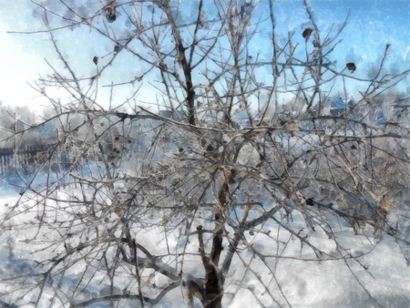 A winter clear day, a rural landscape with a rustic garden covered with snow. frozen branches of trees. Photo manipulation illustration 写真素材