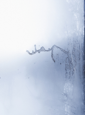 a picture of a frost on the windowpane