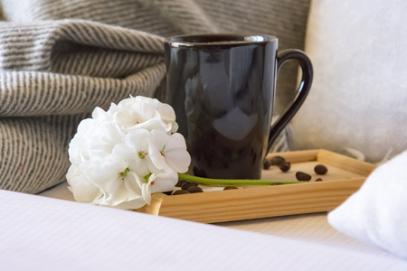 warm home atmosphere, a mug of freshly brewed coffee, grains, a notebook for records, a grey blanket and pillows.