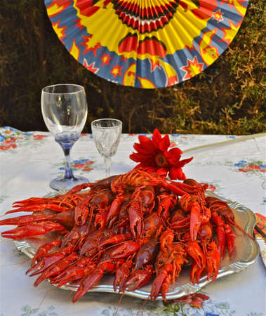 lobster dinner: Swedish Crayfish party Stock Photo