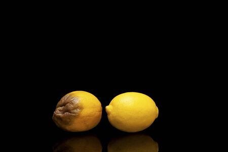Lemons. Comparison. Nice and rotten. Concept. Freshness and withering.