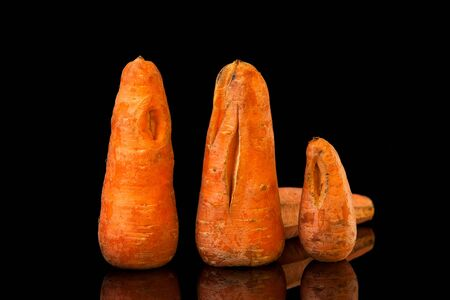 Strange shaped vegetables. Ugly carrots with unusual shapes and cracks are arranged in a row on a black background. Stock Photo