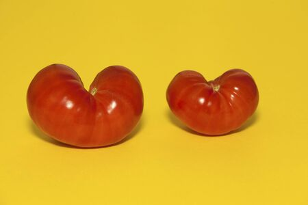 Ugly vegetables. Two heart shaped tomatoes. Copy space.