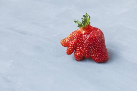 Ripe funny strawberry berry. Trendy food. Concept - Eating ugly fruits and vegetables. Space for text. Banque d'images