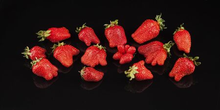 Banner with ugly organic strawberries. A lot of ripe berries on a dark background with reflection. Top view.