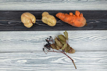 Ugly vegetables (potatoes and carrots) on a wooden background. Concept - reduction of food organic waste.