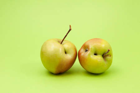 Two ugly apples with flaws on light green background. Selective focus, copy space. Concept - Food waste reduction. Using in cooking imperfect products.