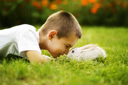 lapin blanc: petit gar�on avec un lapin