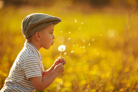 to yellow: cute little boy with dandelions Stock Photo