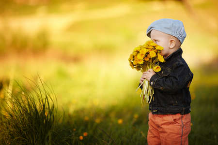 cute little boy with dandelions Stock Photo