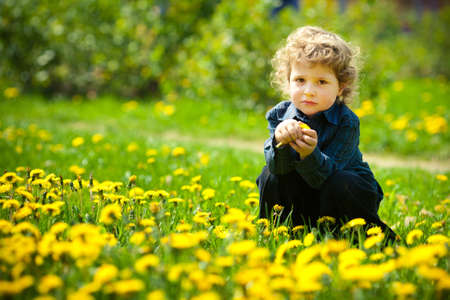 little boy in flowers field photo