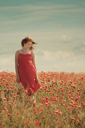 young red haired beautiful girl in poppy field Stockfoto