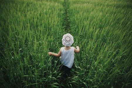 little girl the high grass photo