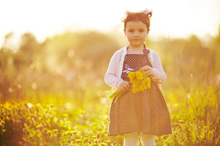 cute little girl with dandelions photo