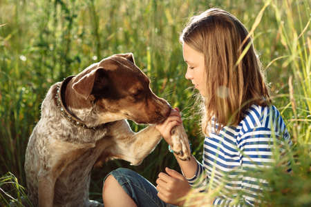 dogs playing: photo of beautiful young girl with dog