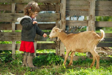 мило коза маленькая девочка кормления в саду