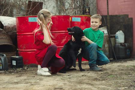 children play: happy children play at dump with dog