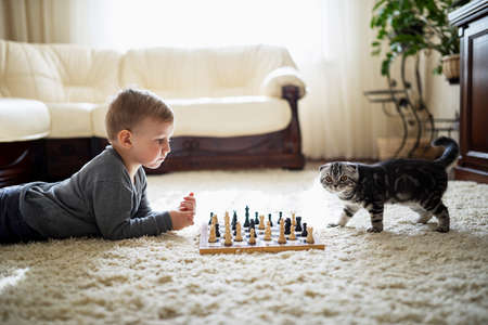 chess player: little boy plays with cat chess lying on the floor Stock Photo