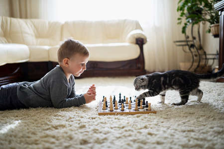 two boys: little boy plays with cat chess lying on the floor Stock Photo