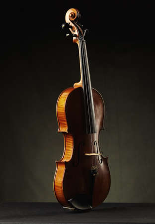 stradivarius: photo of aged violin on dark background Stock Photo