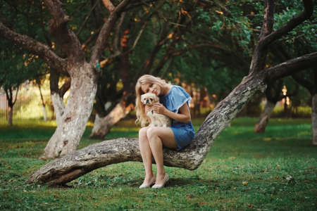 young beautiful girl with pekingese Stock Photo