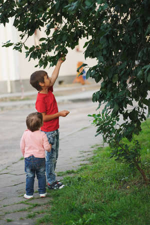 boy and girl pick apples