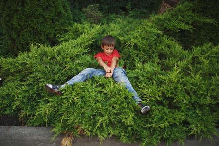 photo of little boy lying on juniper Zdjęcie Seryjne