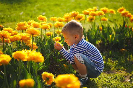 little boy with flowers Archivio Fotografico - 103294261