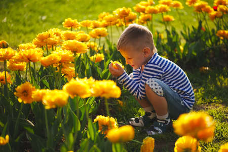little boy with flowers Archivio Fotografico - 103294262