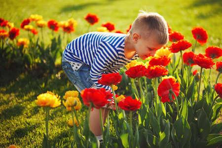 kleiner Junge mit Blumen Standard-Bild