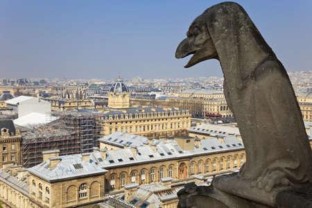 Famous chimera of Notre-Dame overlooking Paris. View from the top of Notre-Dame de Paris, France. photo
