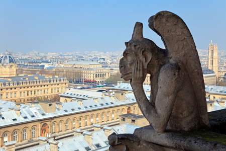 Famous chimera of Notre-Dame overlooking Paris. View from the top of Notre-Dame de Paris, France. photo