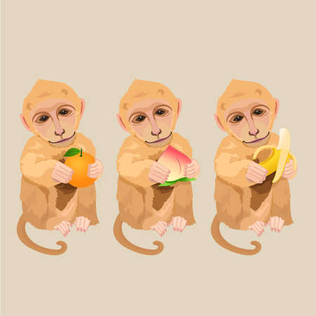 illustrates: Monkey holding an orange, peach and banana. Chinese new year