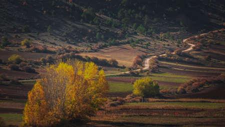 Mountain road and fields in a national park Alto Tajo Фото со стока