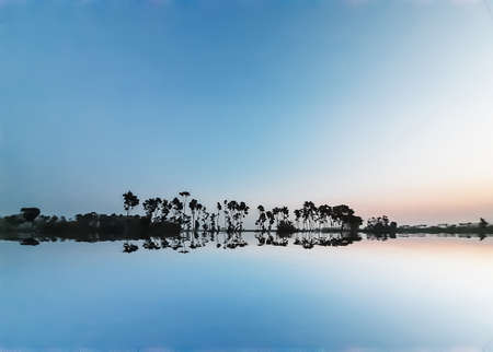 The rural environment of India during sunset. Light clouds and reflection of water down in the blue sky.