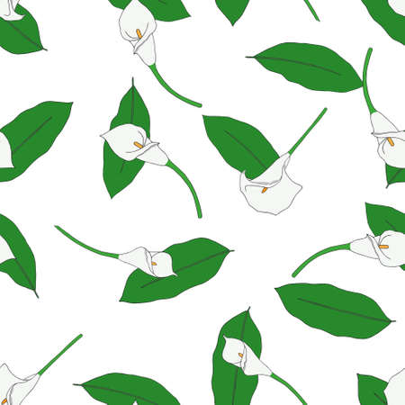 callas: Seamless pattern with hand-drawn callas. Illustration