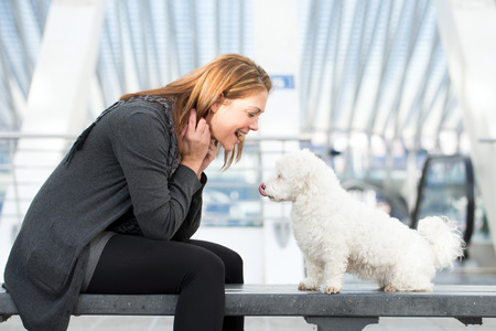 goodies: pretty young woman exercises with white maltese dog with goodies