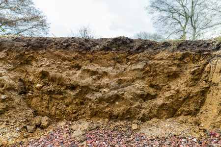 Cross section of excavation showing layers in soil with different horizons
