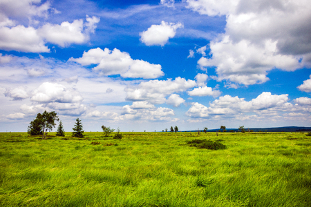 gorgeous wide view at the national park high fens between eifel and ardennes Stock Photo