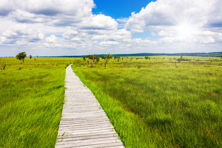 gorgeous wide view over gangplank at the national park high fens between eifel and ardennes Stock Photo