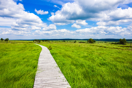 beautiful wide view path gangplank at the national park high fens between eifel and ardennes