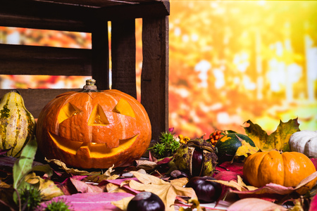 Moody scary carved halloween pumpkin with colorful leaves and chestnuts as background for thanksgiving 写真素材 - 109647851