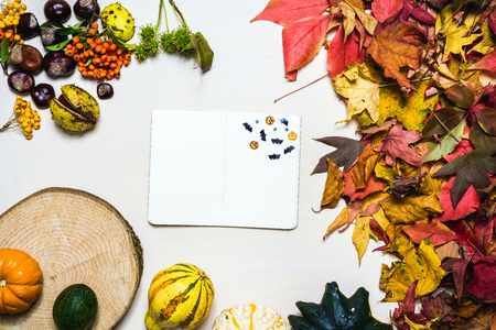 Moody autumn background picture with colorful leaves, pumpkins, chestnuts with white blank notepad with free space for message as template
