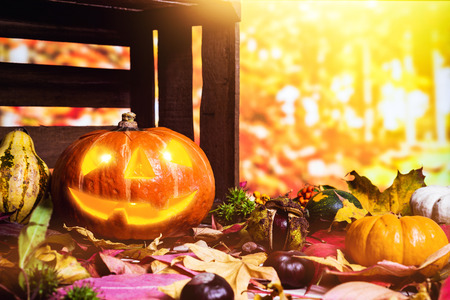 Moody scary carved halloween pumpkin with colorful leaves and chestnuts as background for thanksgiving Imagens