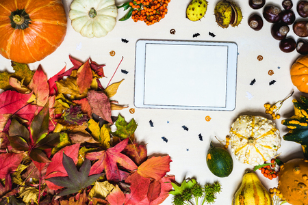 Moody autumn background picture with colorful leaves, pumpkins, chestnuts with white blank tablet with free space for message as template Standard-Bild