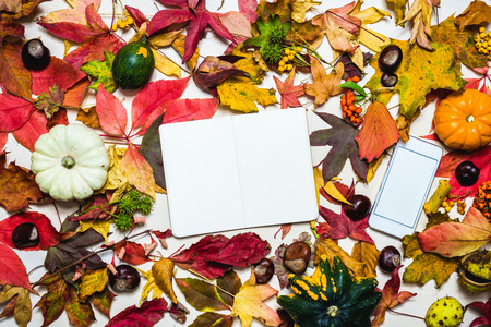 Moody autumn background picture with colorful leaves, pumpkins, chestnuts with white blank notepad and phone with free space for message as template